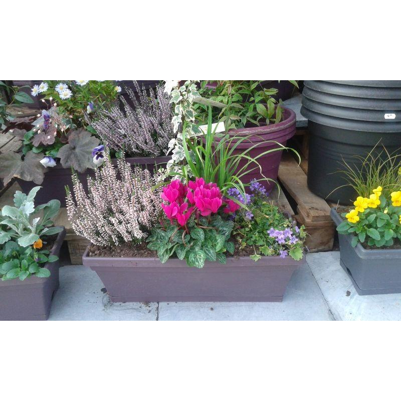 Acheter jardini re avec bruy res pas cher for Jardiniere d automne