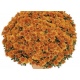 Chrysanthème Orange