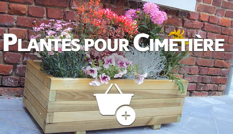 https://www.coclicoh.com/85-plantes-pour-le-cimetiere